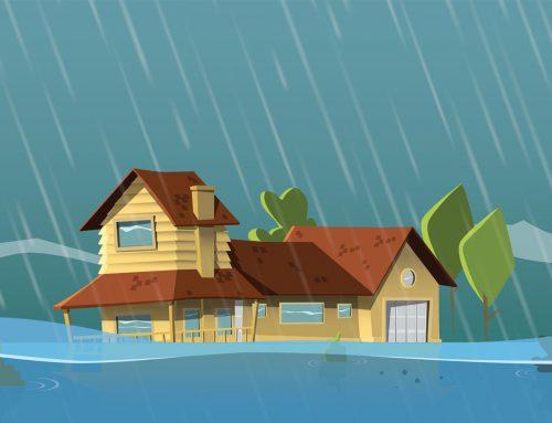 Ce fac în cazul în care sunt afectat de inundații? | Întrebări și răspunsuri